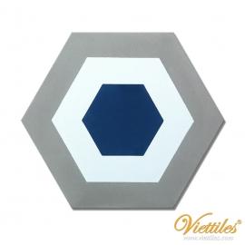 VH23-005-T-01