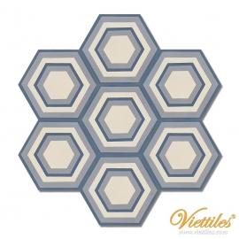 VH23-006-T-01