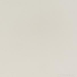 V20-1007